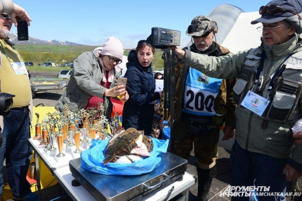 Рекордный улов Юрия Кожанова, который поймал с катера 44 кабалы общим весом 8кг 680 гр.