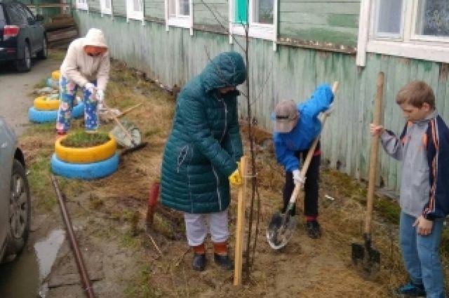 В Салехарде приводить дворы в порядок помогают жители