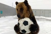 «Тима не впервые принимает участие в футбольных мероприятиях, — продолжает Павел. — Он болельщик со стажем».