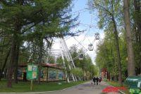 В Перми установилась хорошая погода, поэтому самое время прогуляться по паркам
