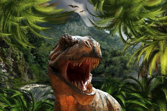 В Китае нашли следы динозавров, живших 120 миллионов лет назад - Real estate