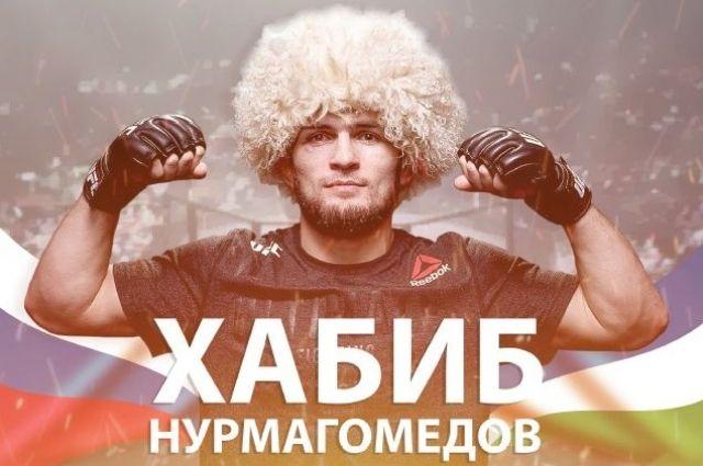 Приколы про, картинки хабиба нурмагомедова с надписью