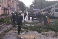 Спасатели распилили дерево и убрали с дороги, сейчас на месте работают электрики.