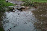 Жители города написали в социальных сетях, что шквалистый ветер ломал деревья, порой вырывая с корнем