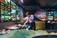 В музее кипит и клокочет энергией бурная жизнь.