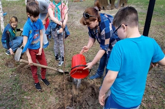На Ямале высадили более 1 200 деревьев
