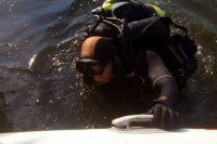 Под Днепром водолазы вытащили из воды женский труп