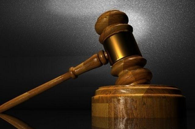 Приговор не вступил в законную силу.
