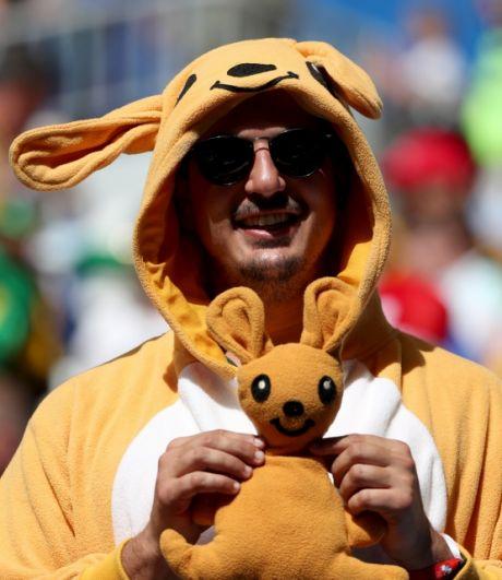 Болельщик сборной Австралии в костюме одного из символов страны - кенгуру.