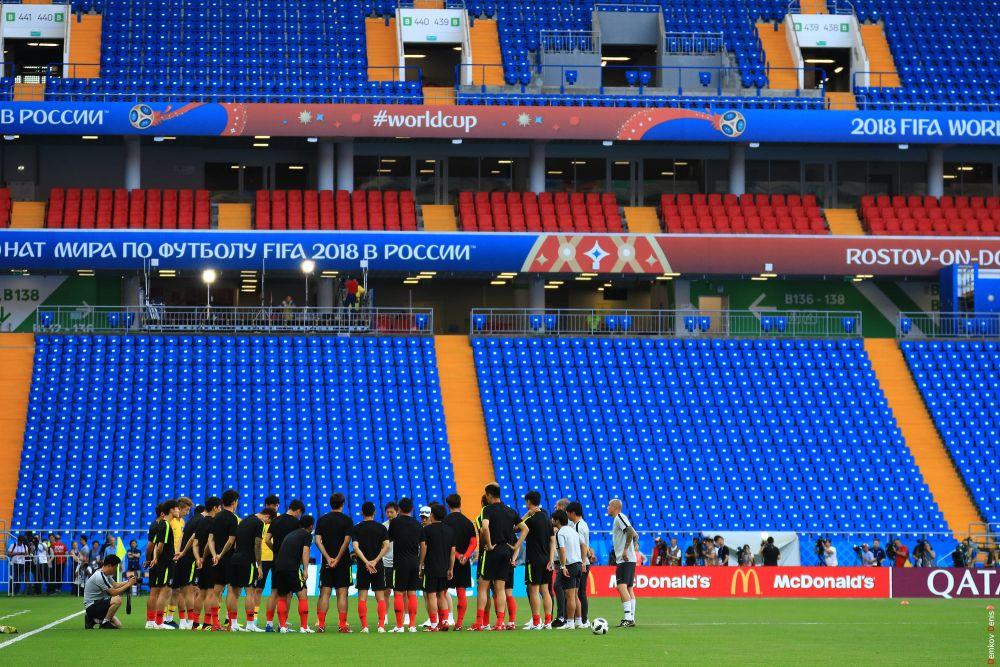 Команда Южной Кореи впервые вышла на поле «Ростов-Арены».