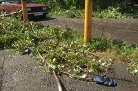 Власти оценивают ущерб от урагана