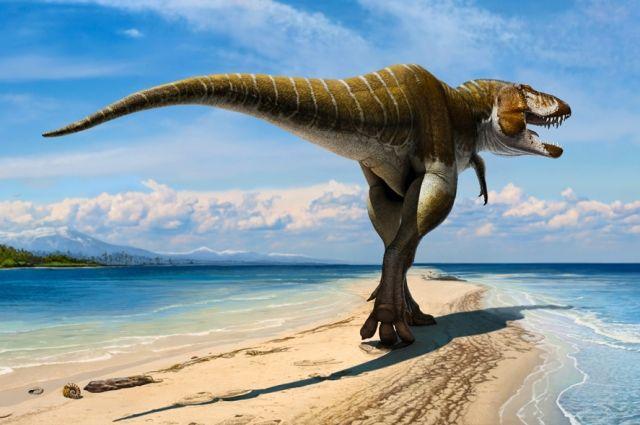 Кемеровские учёные предполагают, что в наших краях могли обитать гигантские хищные ящеры.
