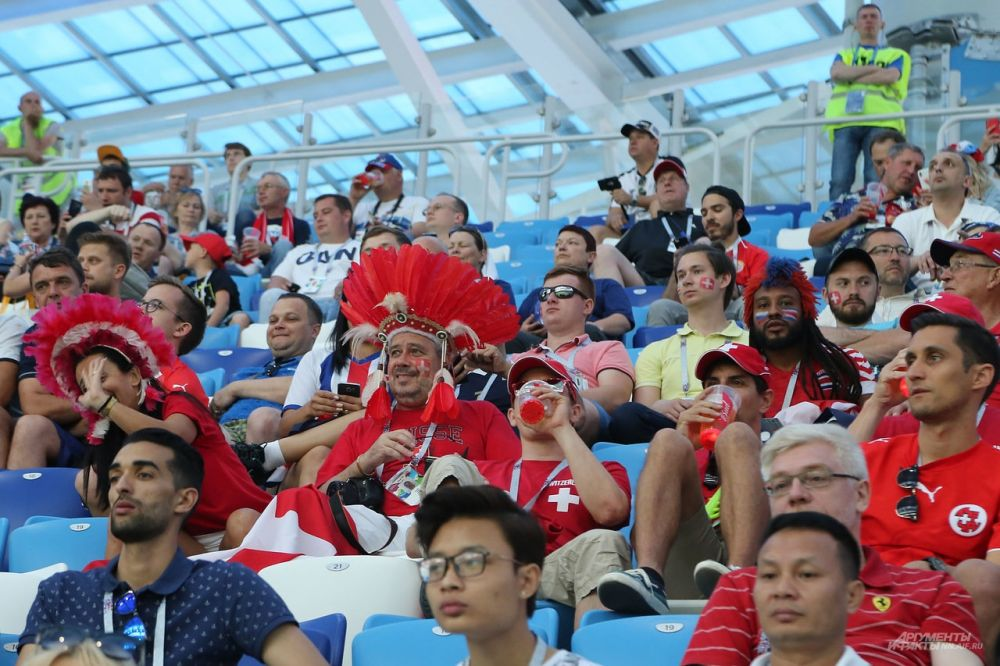Швейцарские болельщики на стадионе