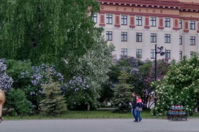 Тюмень расцвела: какими красками порадовал город?