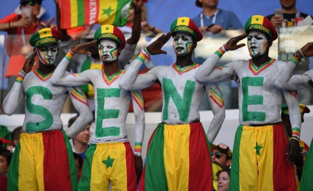Болельщики Сенегала написали название своей страны на телах.