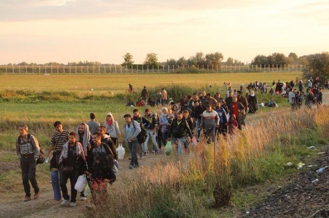 Беженцы из стран Ближнего Востока.