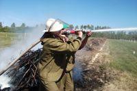 В Рощино пожарные отрабатывали навыки ликвидации возгораний самолета