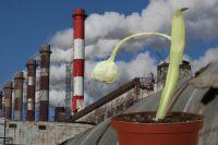 В Уренгое обнаружили факт загрязнения нефтепродуктами