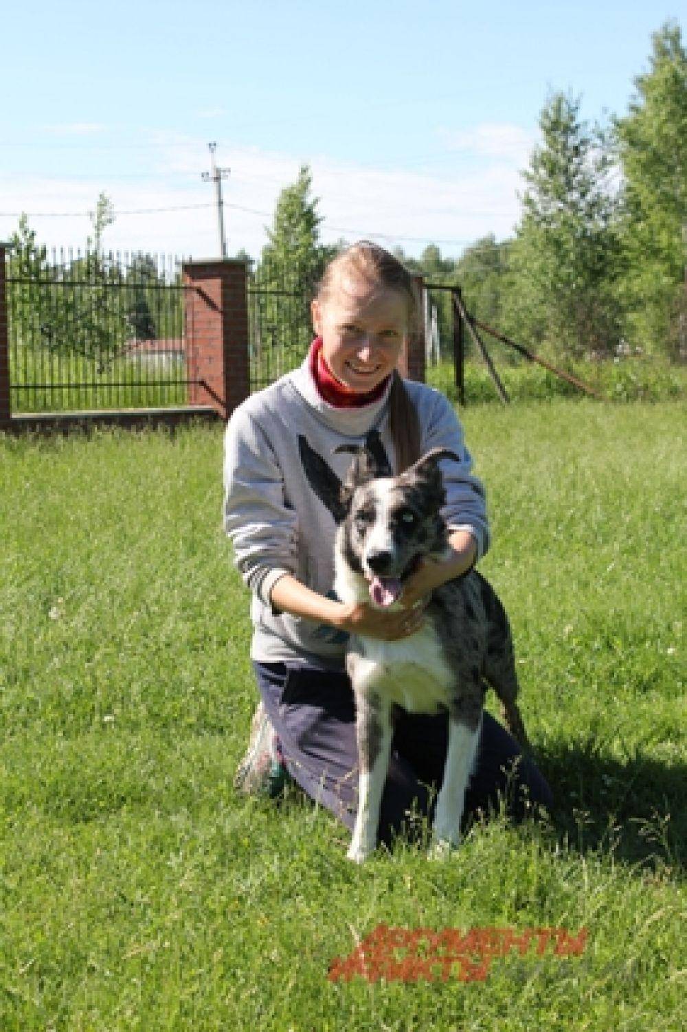 Стэлс учится быть пастухом всего год, но уже добился больших результатов. Его хозяйка Алена Торбина во всем поддерживает любимца.