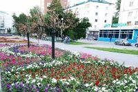 В Тюмени обильно поливают молодые кустарники и деревья