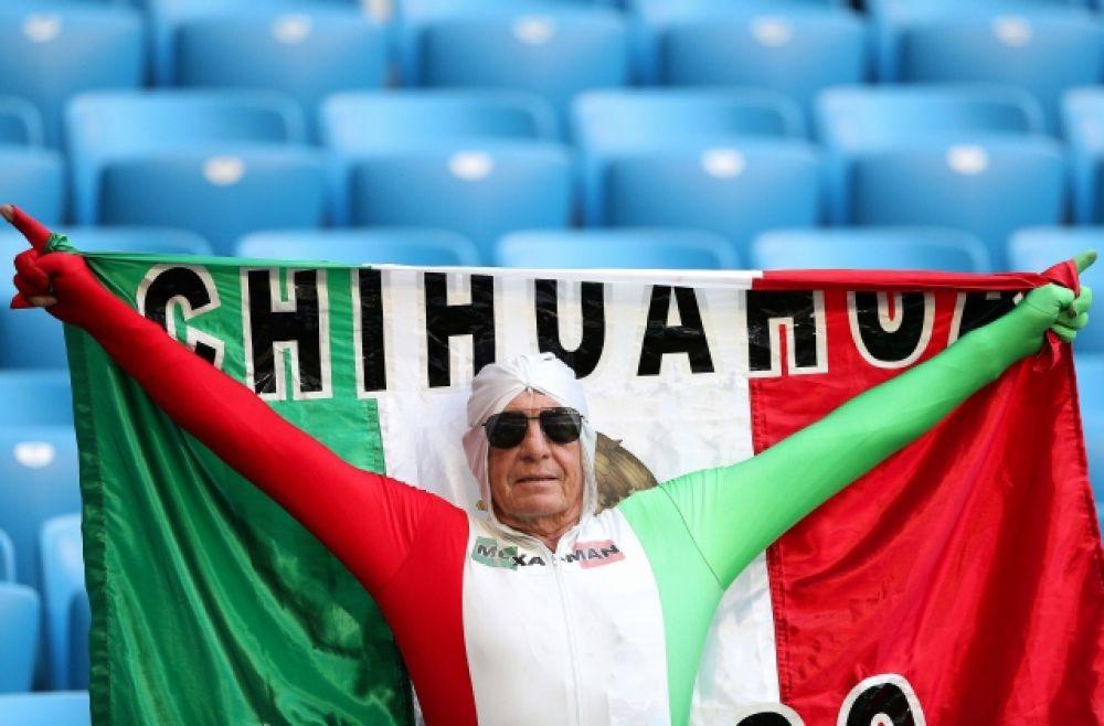 Мексиканский фанат с флагом и сам в костюме-триколоре.