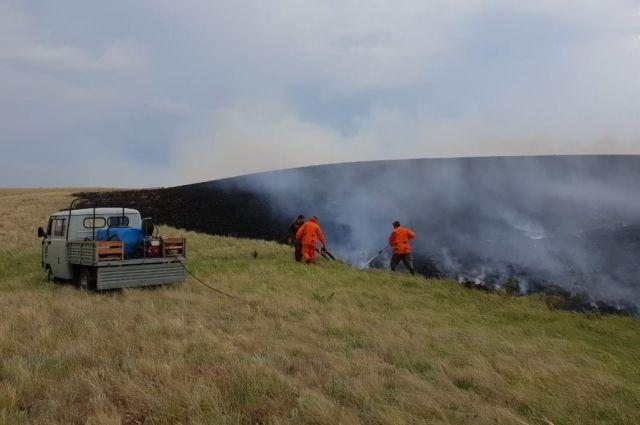 Заповедникам Оренбуржья угрожают пожары.