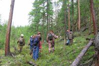 Лиственница Центральной Сибири растет от тундры до Алтая и Саян.