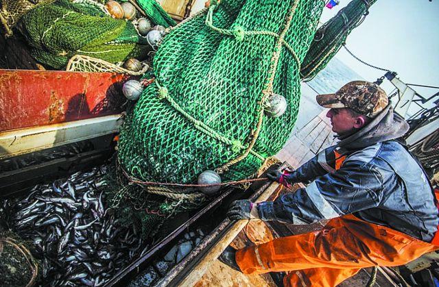 Тысячу порций ухи раздадут приморцам вДень рыбака