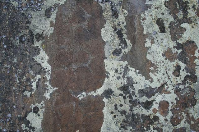 Найденные в Горном Алтае петроглифы