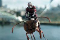 «Человек-муравей и Оса».