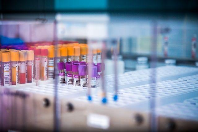 Централизованная лаборатория Омского клинического диагностического центра.