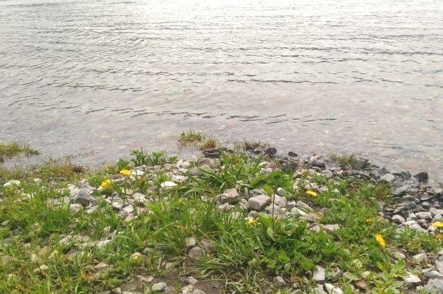 Спасатели получили сообщения о том, что на реке Ирень, в районе железнодорожного моста на акватории реки пропала 65-летняя женщина.