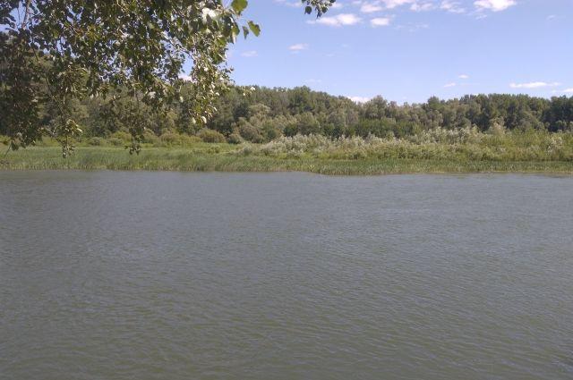 СМИ: в Бузулуке 10-летняя девочка после купания впала в кому.