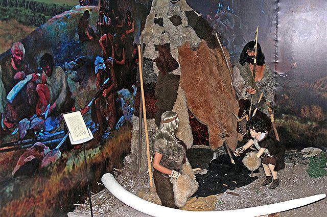 Полис ОМС каменного века. Как и чем лечились люди на заре своей истории - Real estate