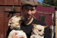 В приюте Дмитрия Самойлова живут 200 собак.