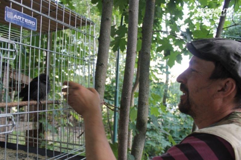 Разговаривать с птицами у Дмитрия тоже получается.