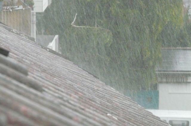 СМИ: не менее 179 человек погибли из-за ливней в Японии