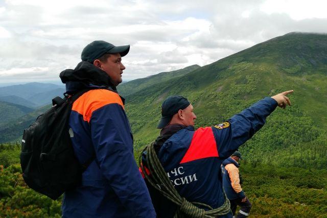 Пропавших в тайге ищут с земли и с воздуха: спасатели пешком обходят тысячи квадратных метров