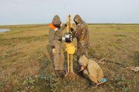 Ямальские учёные восстанавливают геокриологическую наблюдательную сеть