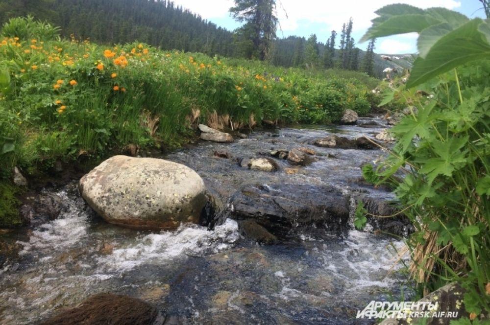 Родники и ручейки с чистой вкуснейшей водой на каждом перевале.
