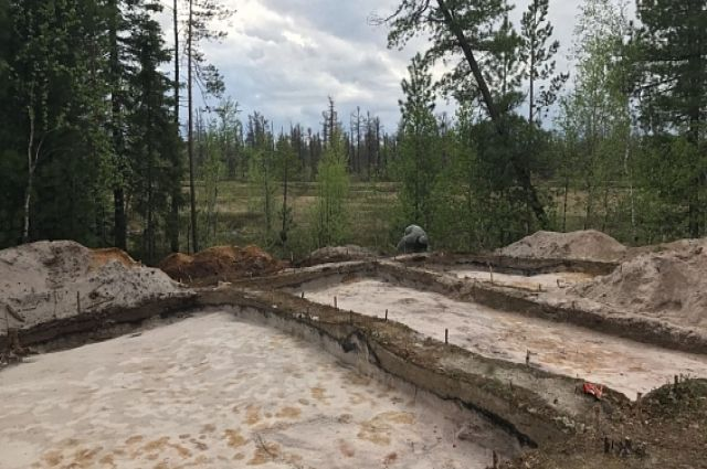 Поселение Пякопур подарило археологам уникальную находку