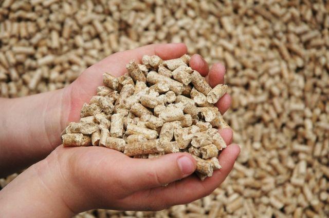 Корм для животных нужно проверять на токсичность, чтобы избежать ущерба хозяйству.