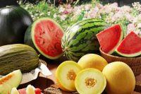 Бахчевый рай: как выбрать арбузы и дыни, и как «вычислить» в них нитраты