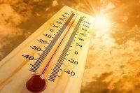 В Красноярске продолжается жаркое лето.