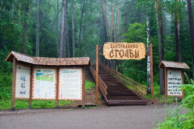 С начала июля в заповедники зафиксированы 11 выходов медведей.