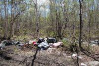 Дачники ленятся отвозить мусор на помойки.