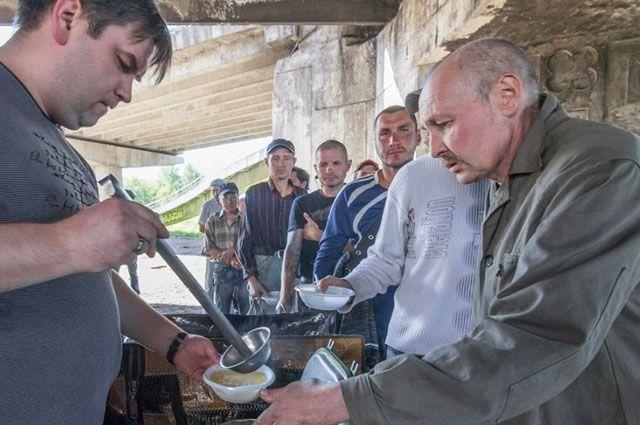 Волонтёры кормят бездомных круглый год.