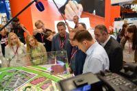 За день до открытия выставки губернатор лично проинспектировал все экспозиции.