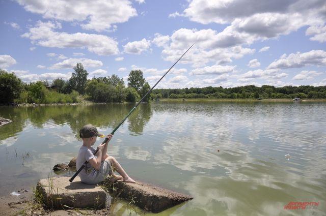 Рыбалка в Санкт-Петербурге - лучшие места для ловли рыбы