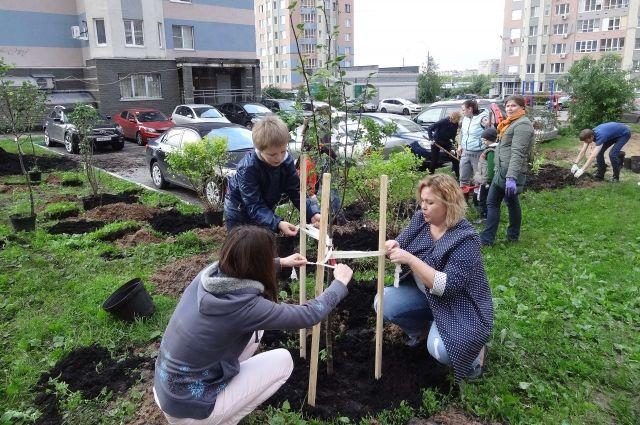 Деревья в городе оказываются на стройплощадках, это неизбежно. Но взамен должны вырастать другие.